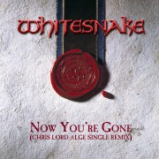 Now You're Gone (Chris Lord-Alge Single Remix) [2019 Remaster]