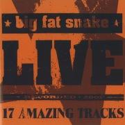 Live (17 Amazing Tracks)