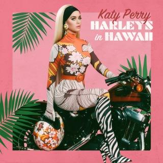 Harleys In Hawaii
