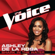 Shark In The Water (The Voice Performance)
