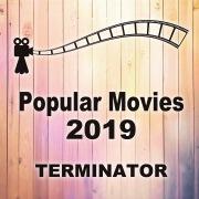 Popular Movies ターミネーター (Terminator)
