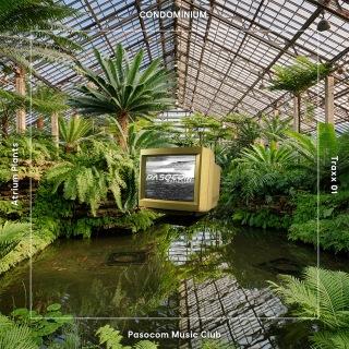 CONDOMINIUM. - Atrium Plants