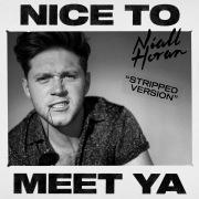 Nice To Meet Ya (Stripped Version)