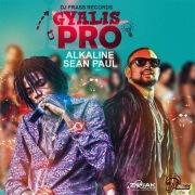 Gyalis Pro (Raw)