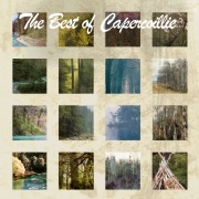 The Best Of Capercaillie