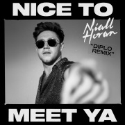 Nice To Meet Ya (Diplo Remix)