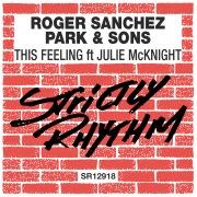 This Feeling (feat. Julie McKnight)