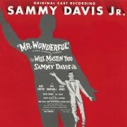 Mr. Wonderful (1956 Broadway Cast Recording)