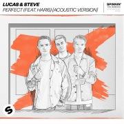 Perfect (feat. Haris) [Acoustic Version]