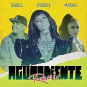 Aguardiente (Remix)