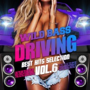WILD BASS DRIVING -BEST HITS SELECTION- VOL.6