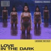 LOVE IN THE DARK (Dzeko Remix)