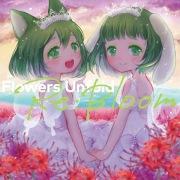 Flowers Unfold Re:Bloom