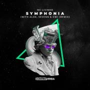Symphonia (with Alok, Sevenn & GW) [Remix]