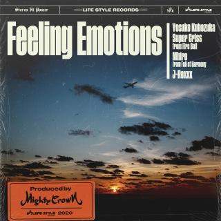 Feeling Emotions