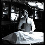 Afterlife (Michael Calfan Remix)