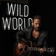 Wild World