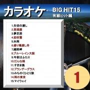 カラオケ BIG HIT 15 有線ヒット編 1