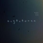 Night Heron (feat. 磯野くん)