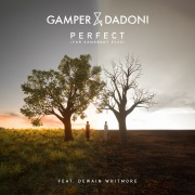 Perfect (For Somebody Else) [feat. Dewain Whitmore]
