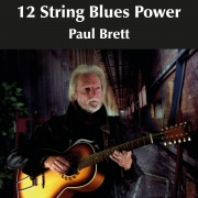 12 String Blues Power