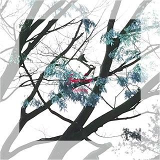 Falling (feat. Kan Sano)