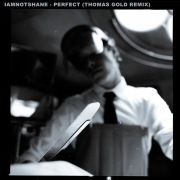 Perfect (Thomas Gold Remix)
