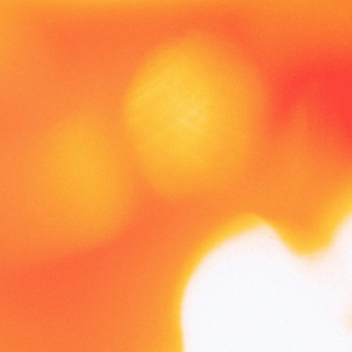 Sunset blvd.(feat. Sarah Furukawa)