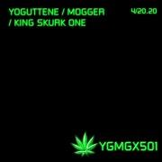 Ygmg501
