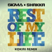 Rest Of My Life (Kokiri Remix)