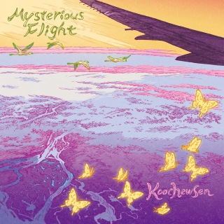 Mysterious Flight