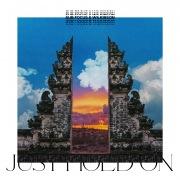 Just Hold On (Sub Focus & Wilkinson vs. Pola & Bryson Remix)
