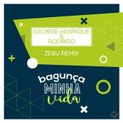 Bagunça Minha Vida (Remix)