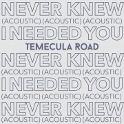 Never Knew I Needed You (Acoustic)