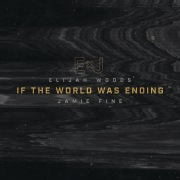 If The World Was Ending (Cover)