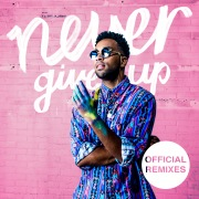 Never Give Up (Remixes)