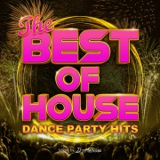 THE BEST OF HOUSE -DANCE PARTY HITS- mixed by DJ Mellow (DJ MIX)