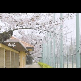 桜の散る音