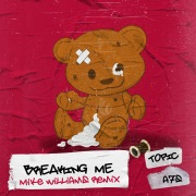 Breaking Me (Mike Williams Remix)