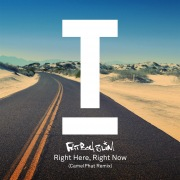 Right Here Right Now (CamelPhat Remix)