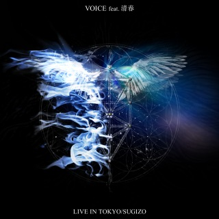 VOICE feat.清春 [from LIVE IN TOKYO]