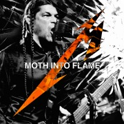 Moth Into Flame (Live)