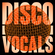 Disco Vocals: Soulful Dancefloor Cuts Featuring 23 Of The Best Grooves