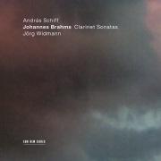 Brahms: Sonata for Clarinet and Piano No. 2 in E Flat Major, Op. 120 No. 2: 3. Andante con moto - Allegro