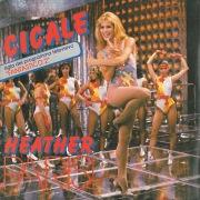 Cicale / Mr. Pulce [Digital 45]