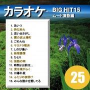 カラオケ BIG HIT 15 ムード演歌編 25