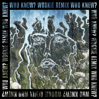 Who Knew? (Wookie Remix)