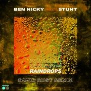 Raindrops (David Rust Remix)
