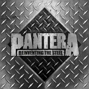 Reinventing The Steel - 20th Anniversary Deluxe Edition (Terry Date Mix)