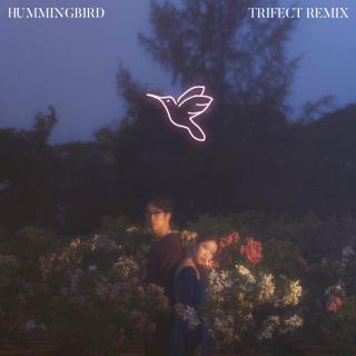 Hummingbird (Trifect Remix)